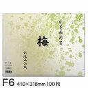 水墨画用箋 梅 F6(100枚入り)