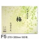 水墨画用箋 梅 F5(100枚入り)
