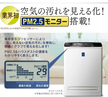 PM2.5�����å��㡼������������ʴPM2.5���ե����ѥ�ӥ��к�17����[�絤�����к�/����/����/�緿/�������������礦��/�����/��ʴ/�ϥ����������к�]������̵���ۡڥ����ꥹ������ޡۡ�N����