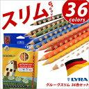 リラ LYRA 鉛筆 色鉛筆 子供 三角軸 グルーヴスリム 36色セット【05P03Dec16】【メール便不可】