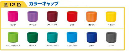 New! シャチハタ-name 9 dress-up parts color CAP is Tuskegee