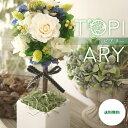 ショッピング観葉植物 プリザーブドフラワー、トピアリー 手作り 結婚祝い 記念日 ギフト プレゼント 結婚記念日