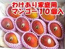 【母の日 父の日】【わけあり】家庭用アップル土佐マンゴー10個入【お中元】