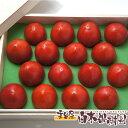 高知県産超高級徳谷トマトとくたにトマト8