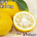 【数量限定】高知産県産ゆず 約3キロ 柚子 国産 わけあり キズモノ