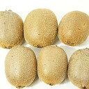 【国産】高知県産キウイフルーツ約1kg