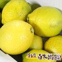 【国産】高知県産レモン約1キロ【ワックス防腐剤不使用】