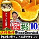 国産 清見オレンジ10キロ(サイズ混合)[5kg箱×2箱]/紀州有田みかん豊作会・北村一雄さんの春み