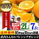 武内さんちのバレンシアオレンジギフト用【秀】選別 2Lサイズ7.5kg【送料無料】有田郡吉備町奥(おき)地区から
