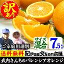 武内さんちのバレンシアオレンジご家庭用【送料無料】サイズ混合7.5kg有田郡吉備町奥