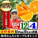 西崎さんちのネーブルオレンジ【送料無料】【秀品】特選ギフト選別品<12果入 約4kg>