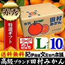 紀州有田「田村みかん」特選ギフト品【Lサイズ】赤秀 10kg...