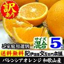 【送料無料】バレンシアオレンジ(買得品5kg)ご家庭用・紀州有田産 わけあり柑橘・訳あり お試し セ