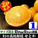 「せとか」1kg/ご家庭用 サイズ混合(幻の最高級 春みかん...
