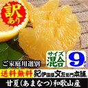 紀州有田産・わけあり柑橘・完熟甘夏(あまなつ)【買得品9kg】甘夏には種があります。気を付けてお召し上がり下さい。