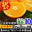 かんきつ セミノールオレンジ まとめ買い ジュース たっぷり