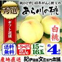 紀州和歌山 あら川の桃 【白桃種】手選り【秀選】 4kg/15�16玉入 生産者からの直送となります。
