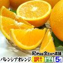 【送料無料】バレンシアオレンジ(買得品5kg)ご家庭用・紀州有田産 わけあり柑橘・