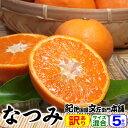 紀州有田みかんの里から なつみ(南津海)みかん(わけあり柑橘:買得品5kg)ご家庭用 この果実は種があります