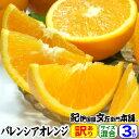 【送料無料】バレンシアオレンジ(買得品3kg)ご家庭用・紀州有田産 わけあり柑橘・訳あり果実を少量お試しセット
