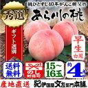 紀州和歌山 あら川の桃(早生白鳳系品種)手選り【秀選】 4kg/15�16玉入