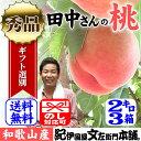 【約2kg箱×3箱セット】田中さんちの大きなわかやまの桃(もも) 和歌山県紀の川市産・田中さんちの桃