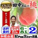 田中さんちの大きなわかやまの桃(もも) 約2kg箱 和歌山県紀の川市産・田中さんちの桃(白鳳・嶺鳳・