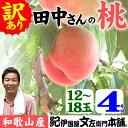 訳ありお買い得和歌山の桃(もも)/完熟ワケアリ品【約4kg】白鳳系品種<完熟果実なので数個の傷みはご...
