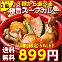 大感謝SALE!【送料無料】3種から選べる北海道極旨スパイシー.スープカレー2食. (やわらかチキン