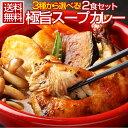 【送料無料】3種から選べる北海道極旨スパイシー.スープカレー2食. (チキン・角煮・ホ