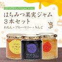 【セット販売】 はちみつ果実ジャム 3本セット レモン イチゴ ブルーベリー 健康補助食品