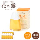【セット販売】 花の露キッチンボトル アカシアはちみつ 健康補助食品 中国産 300g×10本