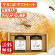 マヌカハニー ギフトセット(250g×2個)【送料無料】ニュージーランド産 無添加・非加熱の天然はちみつ 蜂蜜【アピビー】