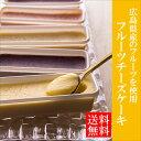 スイーツ【送料無料】一口サイズのフルーツチーズケーキ チーズケーキ 6種 詰め合わせ