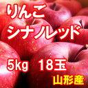 りんご シナノレッド 5kg 18玉【送料無料】【山形産】【国産】