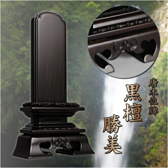 4.0 ebony mortuary tablet Katsumi 寸