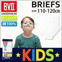 B.V.D.KIDS スパンスタンダードブリーフ  BVD 綿100% 子供 インナー 下着 小学生 【コンビニ受取対応商品】 j622