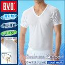 ビジネス サポート Tシャツ インナー
