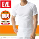 BVD あったか裏起毛 丸首半袖Tシャツ WARM BIZ ウォームビズ BVD 保温 防寒 メンズ 綿100%