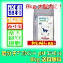愛犬用 食事療法食 ロイヤルカナン 低分子プロテイン+pHコントロール 8kg 【あす楽対応】
