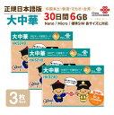 大中華 6GB 3枚お得セット!中国・香港・マカオ・台湾 China Unicom 大中華データ通信SIMカード(6GB/30日)