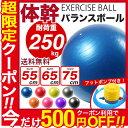 【限定クーポンで500円OFF】バランスボール 55cm 6...