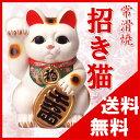 【送料無料:常滑焼】招き猫(白福猫)右手 福 4号(高さ13cm)