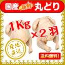 丸どり(生)1kg×2羽【国産】【送料無料】【チルド】【丸どり】【丸鶏】【中抜き】