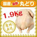 丸どり(生)1.9kg【国産】【チルド】【丸どり】【丸鶏】【中抜き】