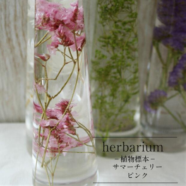 【入荷しました!】【あす楽おやすみ中です】【herbarium Bottle】ハーバリウムボトル サマーチェリー<ピンク>−植物標本−母の日ギフトS期間中こちらのみの商品のギフト包装は有料となります