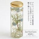 送料無料【herbarium Bottle】ハーバリウムボトル八角ボトル【Medium】フラワーアレンジ<ノーブルブルー>-植物標本-