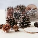 【花材】森の木の実の詰め合わせ詰め合わせクリスマスリース作り...