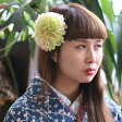 ポンポンダリア【ライトグリーン】珍しい配色のライトグリーンの花飾り