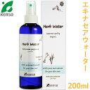 Echinacea_water